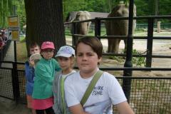 107--ze słoniem i słonicą